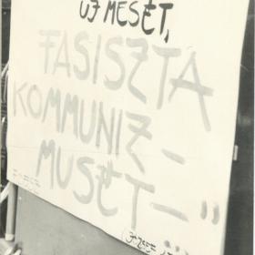 Képek a demonstrációról I.