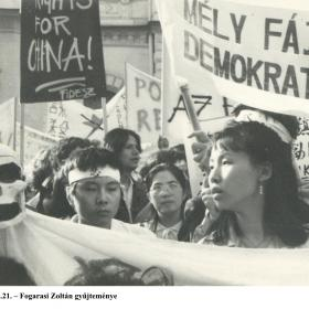 Képek a demonstrációról VII.